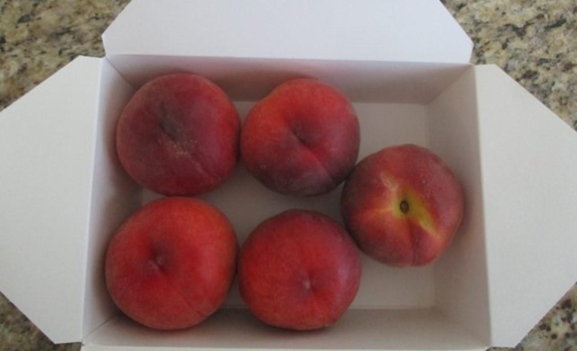 https://bradfordfarms.com.au/wp-content/uploads/2021/09/Amber-Princess-Peach.jpg